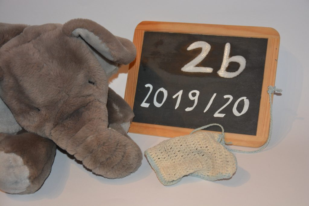 Elefantenklasse 2b, Klassentier 2019
